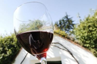 Gourmet & Wein